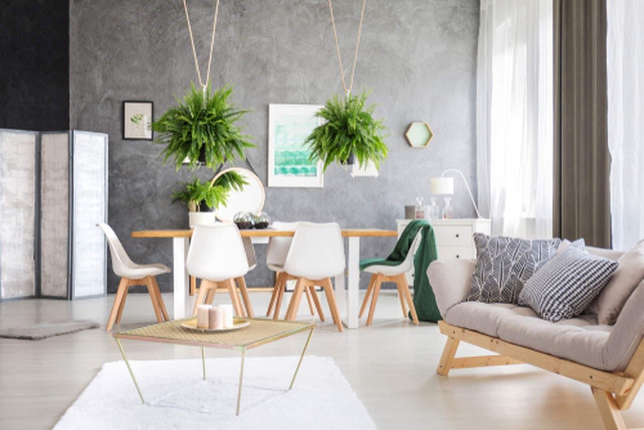 decorar-apartamentos-plantas